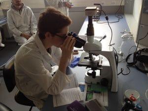 Der GK Biologie Zemke beim Praxistag im Merck BioLab der TU-Darmstadt